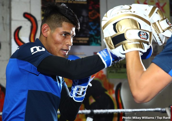 """After five defenses of his WBO junior featherweight world title, Navarrete is ready to conquer the featherweight division. The """"Mexican Iron Man"""" and boxing's most active world champion, Navarrete fought six world title bouts in just over 14 months (December 2018 to February 2020). He last fought a non-title bout against Uriel Lopez on June 20 in Mexico City, scoring a sixth-round TKO. The WBO No. 1 featherweight contender, Navarrete has won 27 consecutive bouts, including 14 of his last 15 by stoppage. Villa, from Salinas, Calif., has defeated contenders Alexei Collado, Jose Enrique Vivas and Luis Alberto Lopez in his last three bouts to earn the world title shot."""